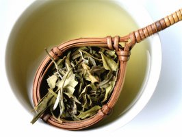 Exclusive white tea